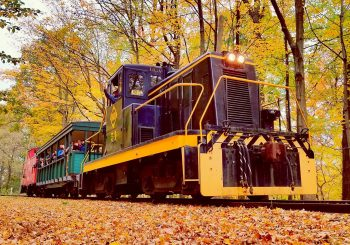 October Pumpkin Patch Train Rides